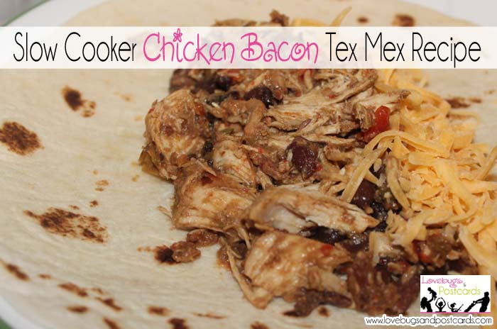 Slow Cooker Chicken Bacon Tex Mex Recipe