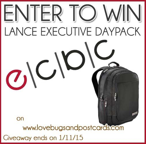 GIVEAWAY: Lance Executive Daypack from ECBC Travel (ends 1/11/14)