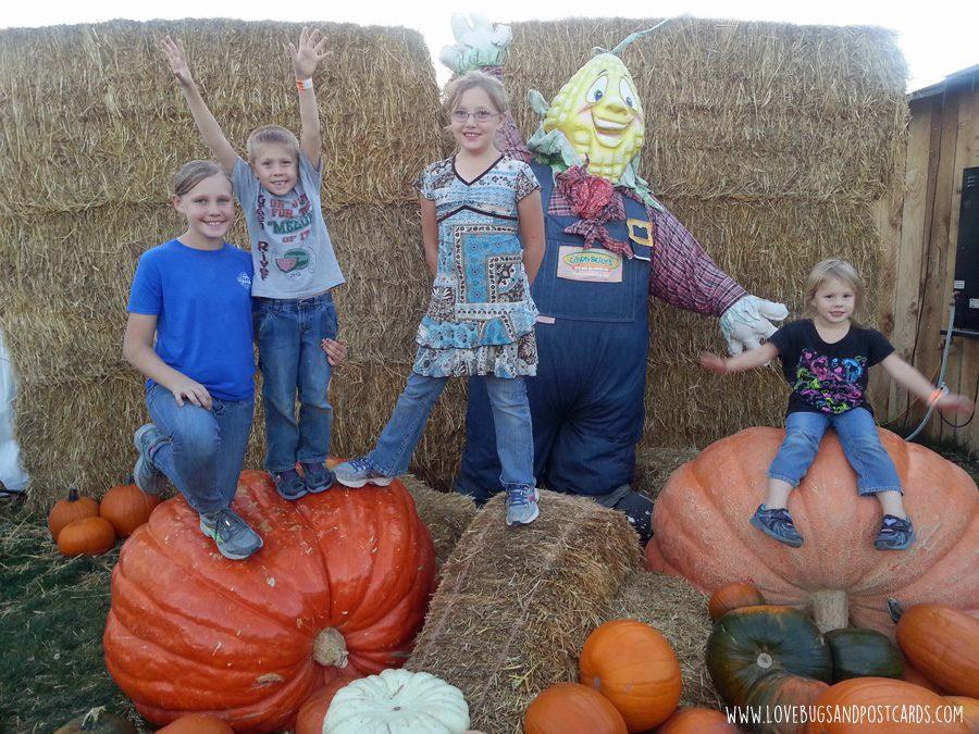 Fall Activities in Utah