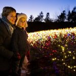 Luminaria: Experience the Light at Thanksgiving Point