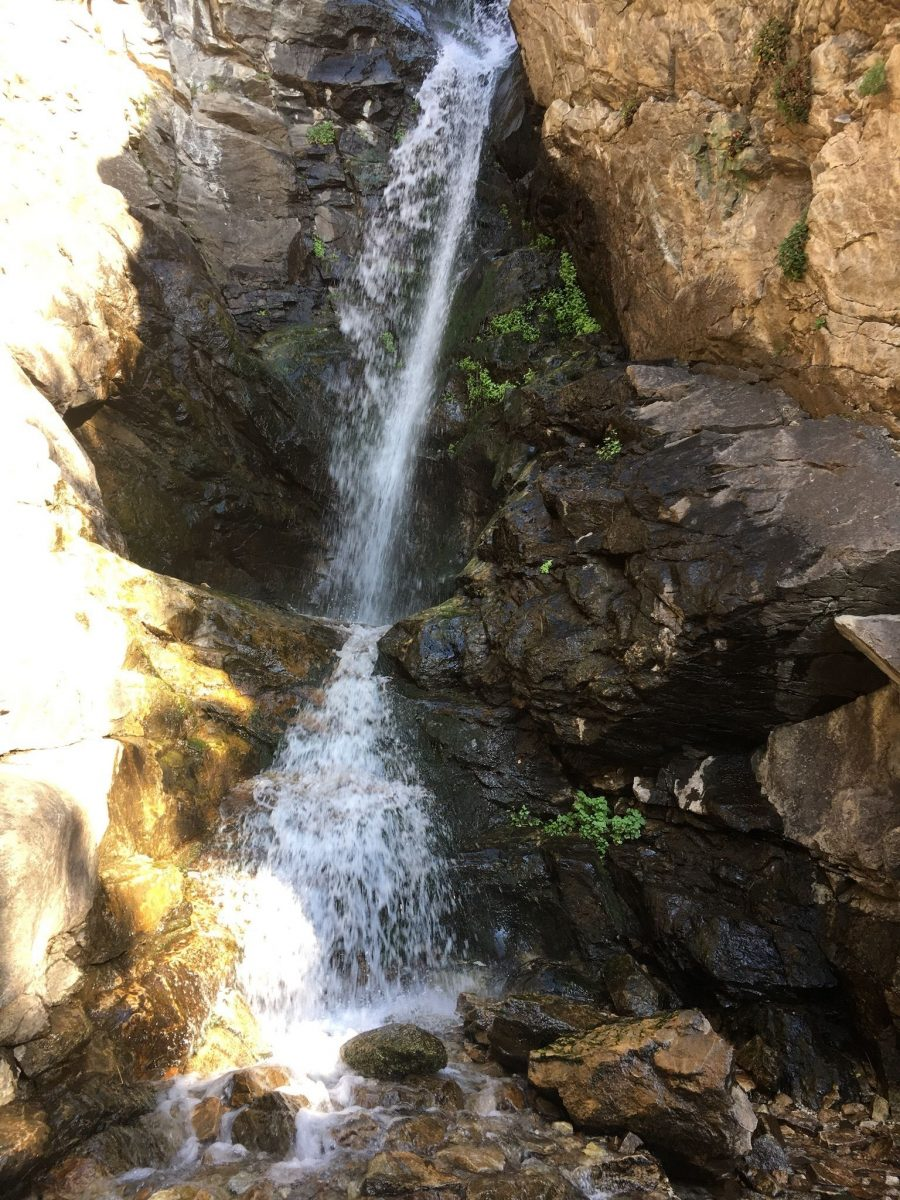 Rocky Mouth Falls Trail