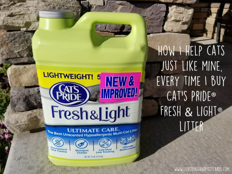 How I help cats just like mine, every time I buy Cat's Pride® Fresh & Light® litter