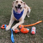 Springtime fun with Jake and Chuckit! toys