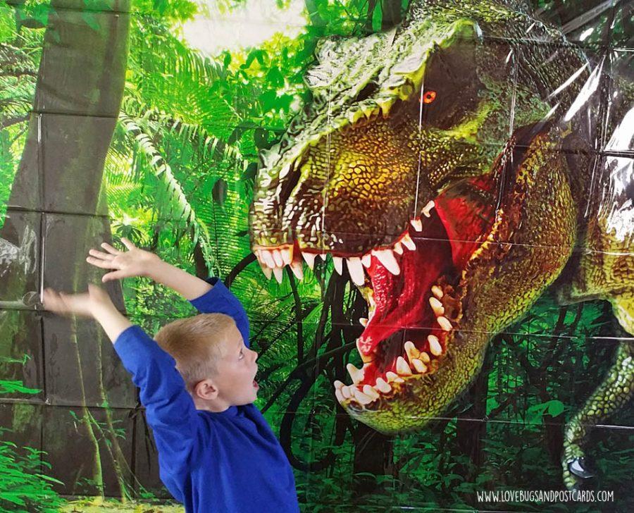 Dinosaur Birthday Party Ideas - Scene Setter