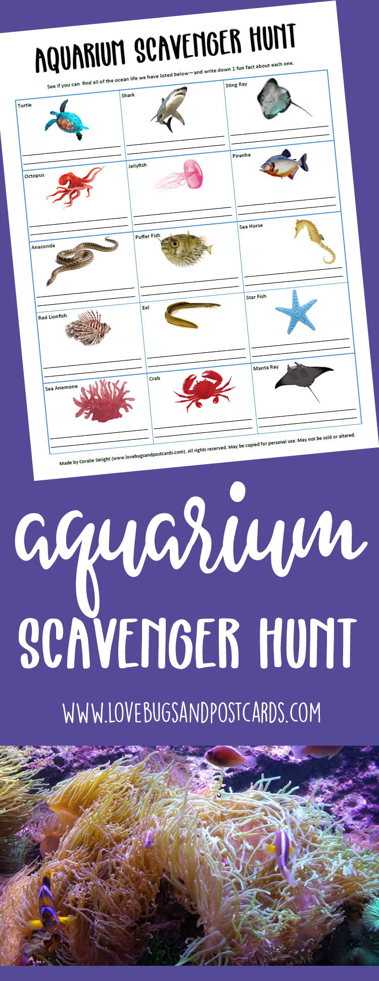 Print out this Aquarium Scavenger Hunt before you head out on your next trip to the aquarium. Great for family, friends, school and play-date groups.