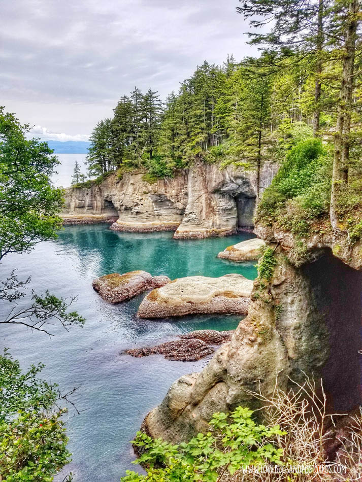 Cape Flattery Trail in Washington