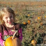 Utah Pumpkin Patches