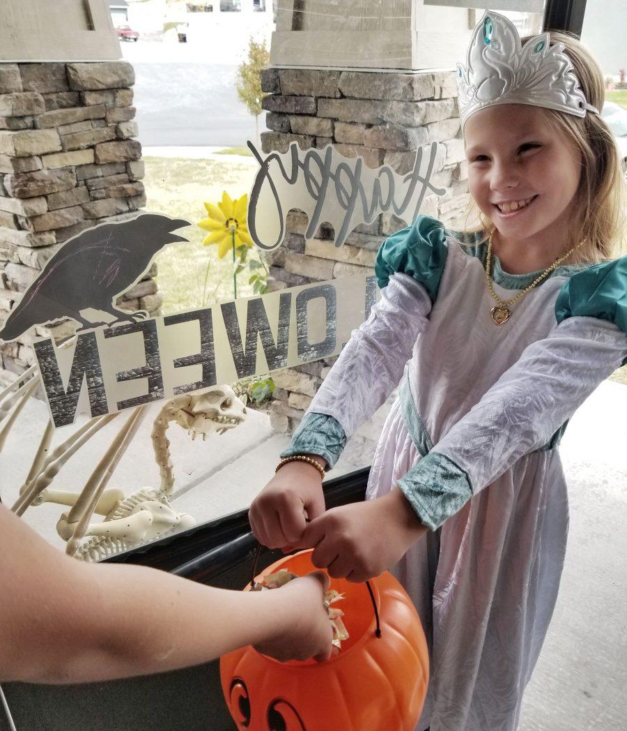 Swan Princess 25th Anniversary Movie and Costume