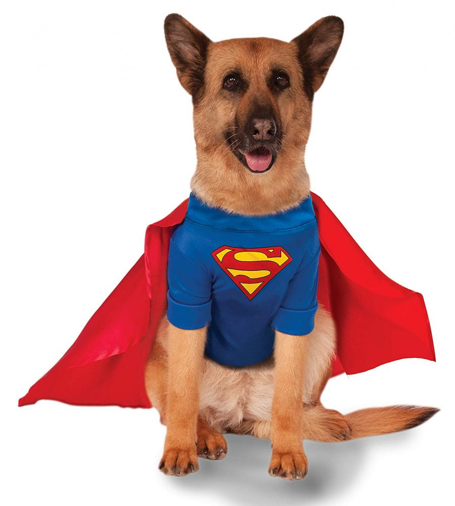 DC Comics Superman Shirt and Cape Pet Costume