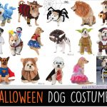Halloween Dog Costume Ideas
