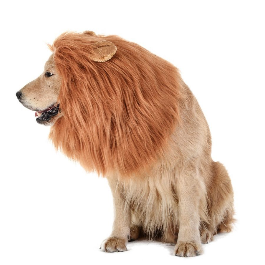 Dog Lion Mane Halloween Costume