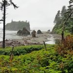 Ruby Beach in Washington