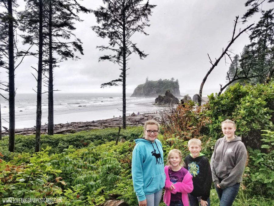 Lookout of Ruby Beach in Washington
