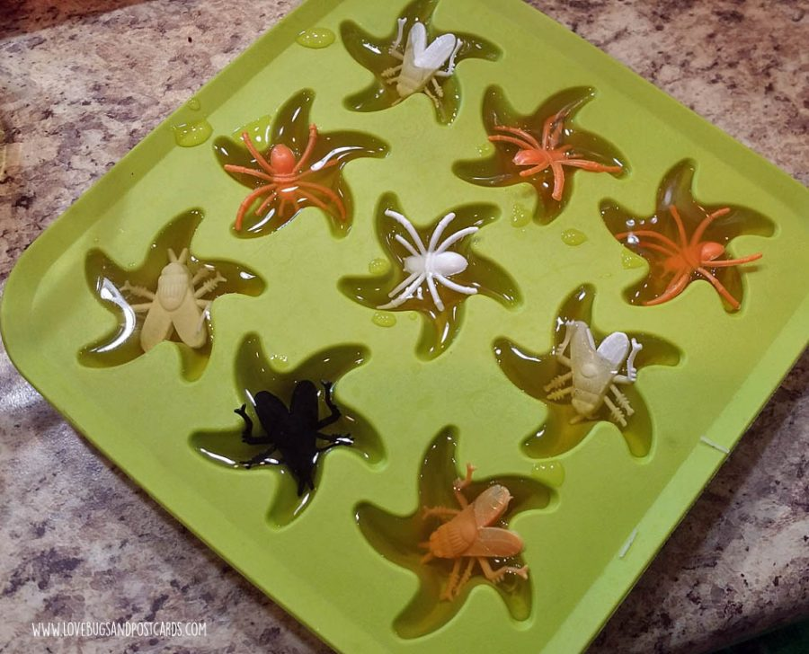 Dinosaur Birthday Party Ideas - Bug Ice Cubes