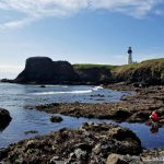 Yaquina Head Oregon (Lighthouse and Cobble Beach)