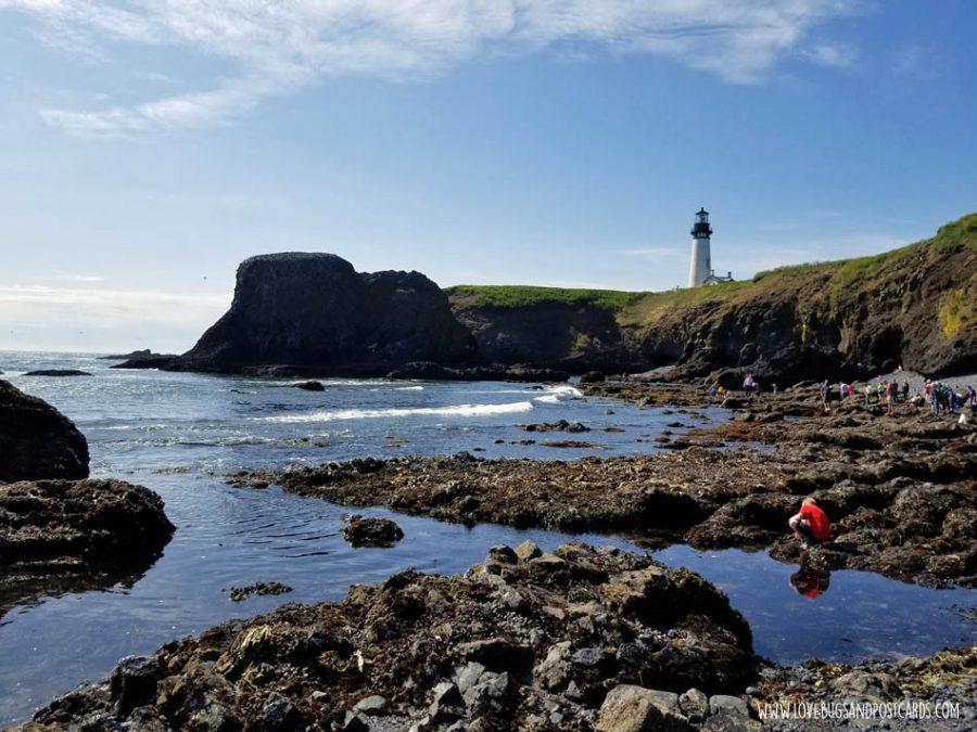 Yaquina Head Oregon (Lighthouse and Cobble Beach)