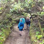 Hobbit Trail Hike in Oregon