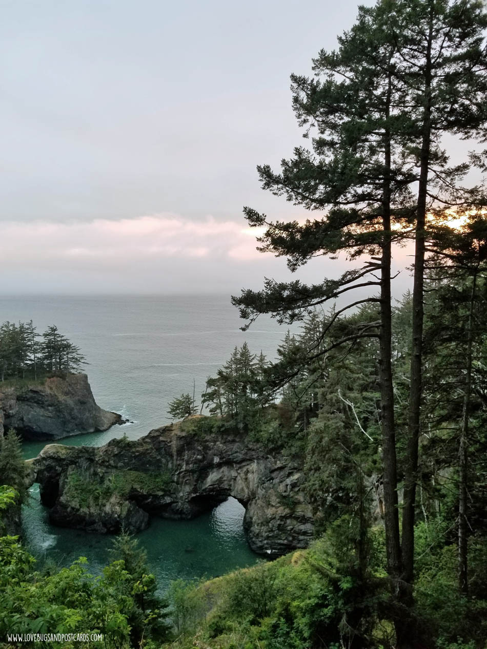 Natural Bridges in Brookings, Oregon