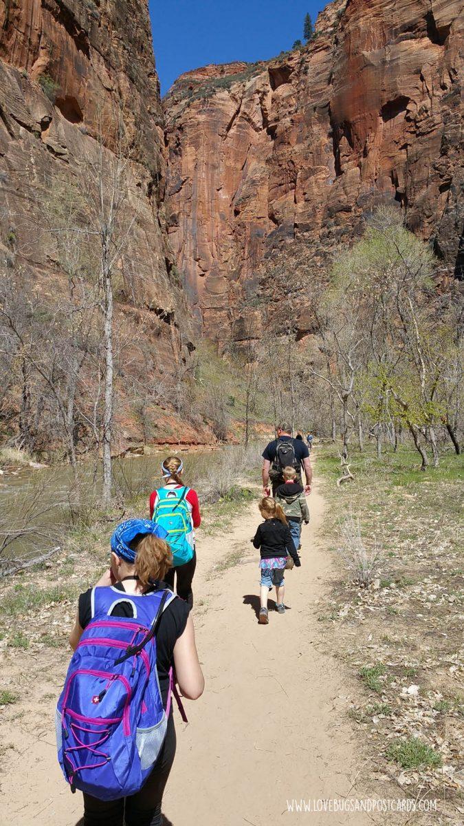Riverside Walk Trail Zion National Park