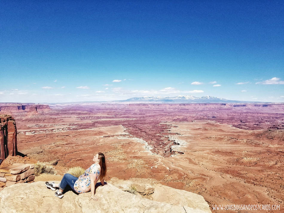 Buck Canyon Overlook  in Canyonlands National Park - Island in the Sky