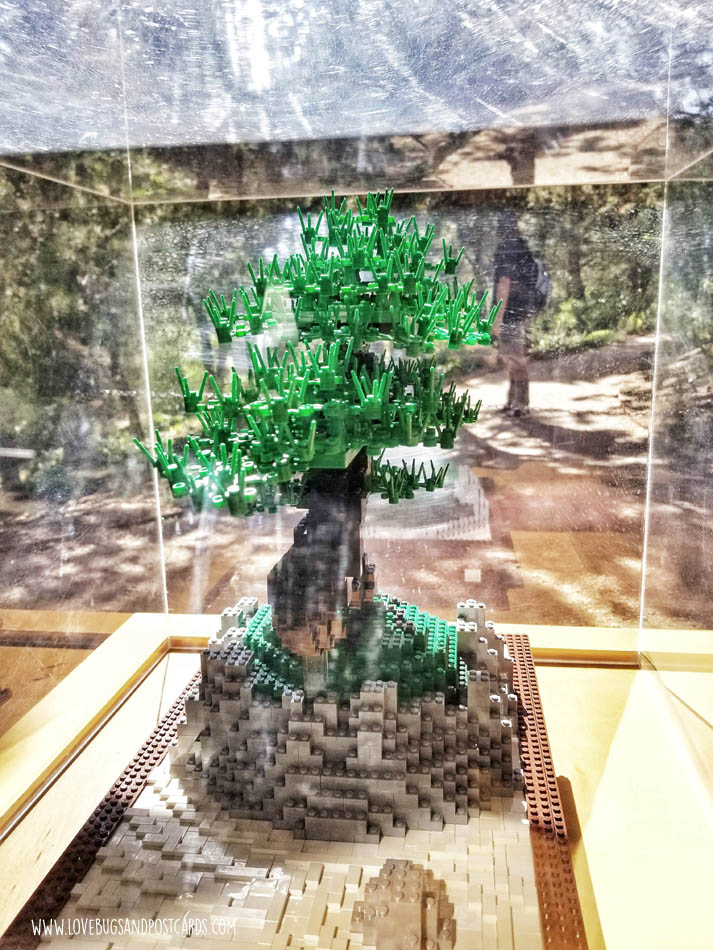 Sean Kenney's Nature Connects Made with LEGO® Bricks at Thanksgiving Point - Bonsai Tree