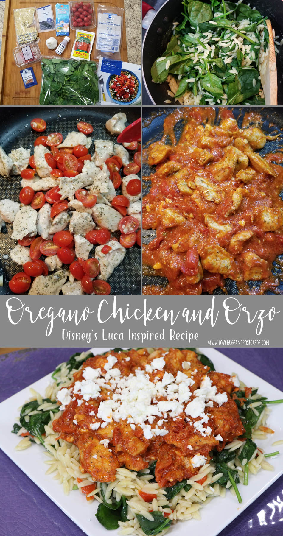Get inspired by these Disney's Luca Recipes  - Oregano Chicken and Orzo