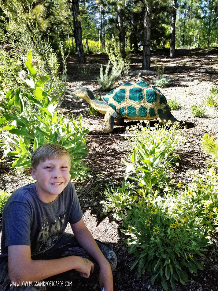 Sean Kenney's Nature Connects Made with LEGO® Bricks at Thanksgiving Point - Galapagos Tortoise
